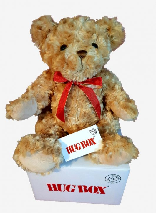 Teddy Hug Box
